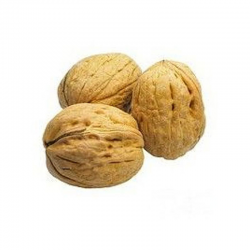 NUECES CASCARA